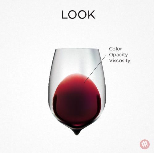 how-to-taste-wine-step-1.jpg