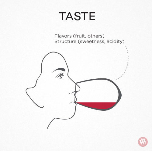 how-to-taste-wine-step-3.jpg
