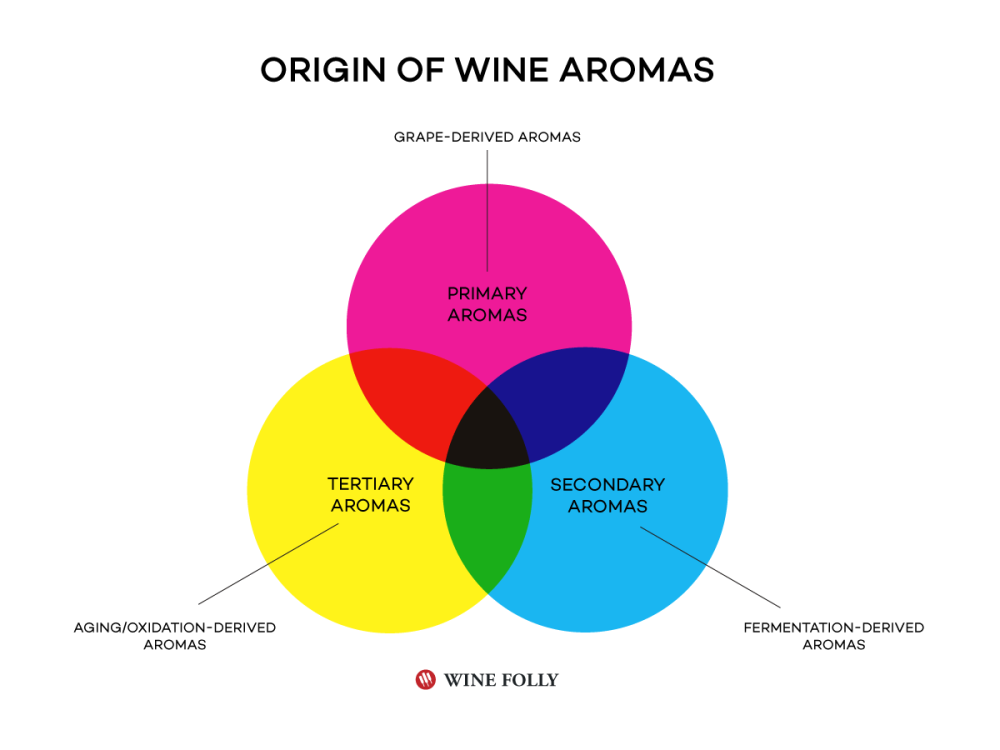 origin-of-wine-aromas-wine-folly